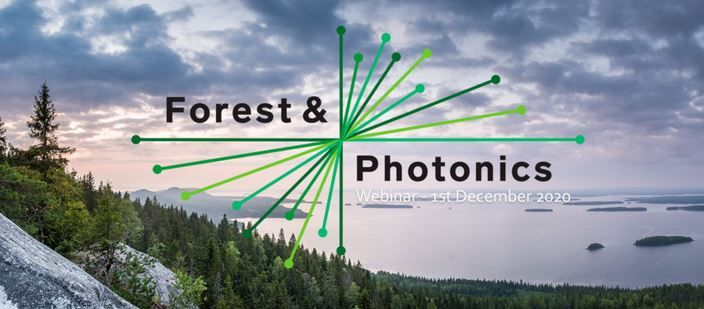 Forest and Photonics.JPG